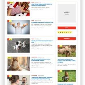 Magazin Template WordPress