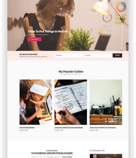 WordPress Blog und Business Thema