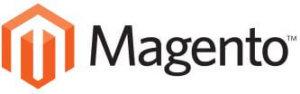 Magento Themes