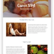 Wordpress Spa Thema