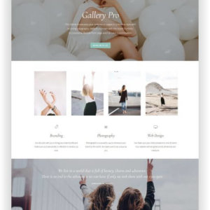 WordPress Gallery Pro Theme