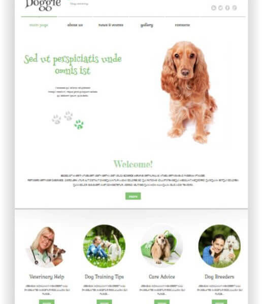 WordPress Hundeschule Thema