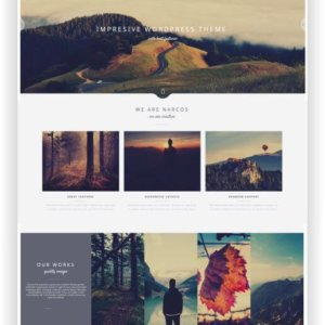 WordPress Creatives Multithema