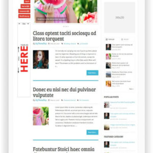 WordPress Multithema für Blog oder Magazin