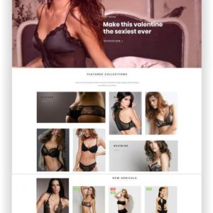 PrestaShop Dessous Shop Thema